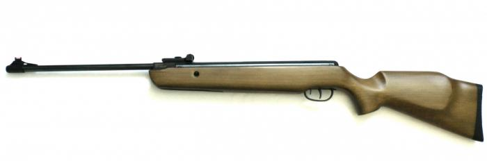 What Type of Air Rifle Should You Buy?